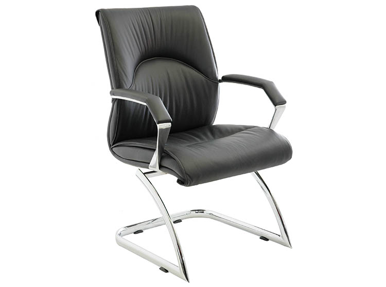 ORMA Leather Guest Chair-2